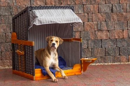 Hundetstrandkorb