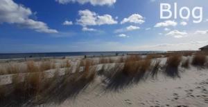 Strandkorb Blog